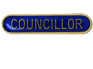 Fancy becoming a Councillor?